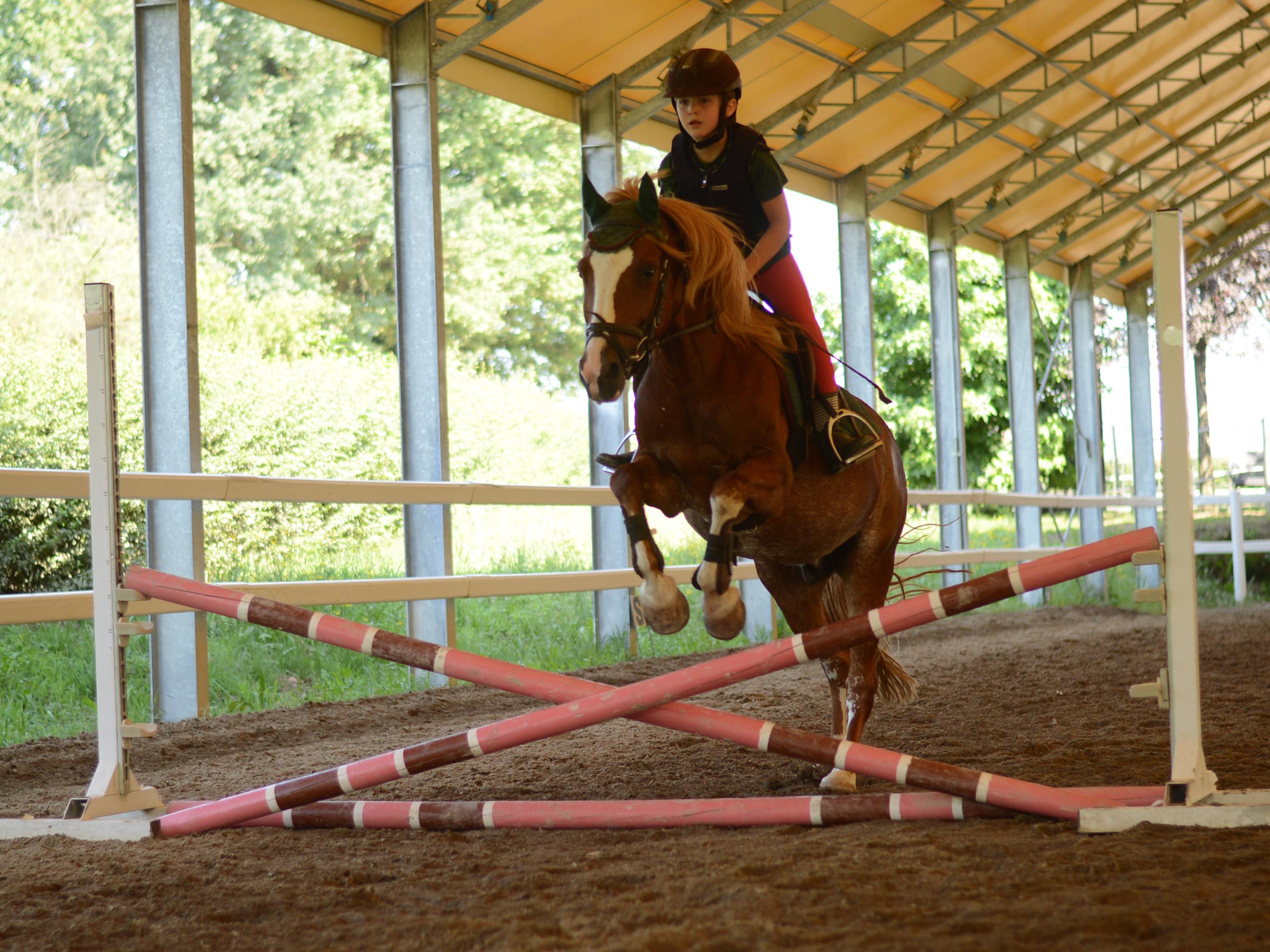 scuola_equitazione_pony_centro_ippico_la_fonda_varese_0011_318